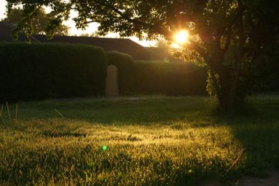 Garden Lawn 400x267 Run Off Redux: Reusing Rainwater in the Garden