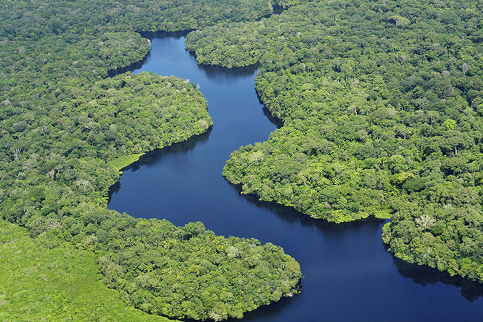 amazon sml 700x467 Deforestation in the Amazon is something you can help prevent