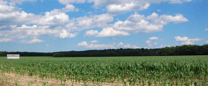 climate friendly farms